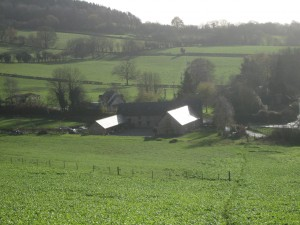 Yoga Venue, Forest of Dean
